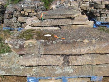 WLB-Moss-slabs-3042